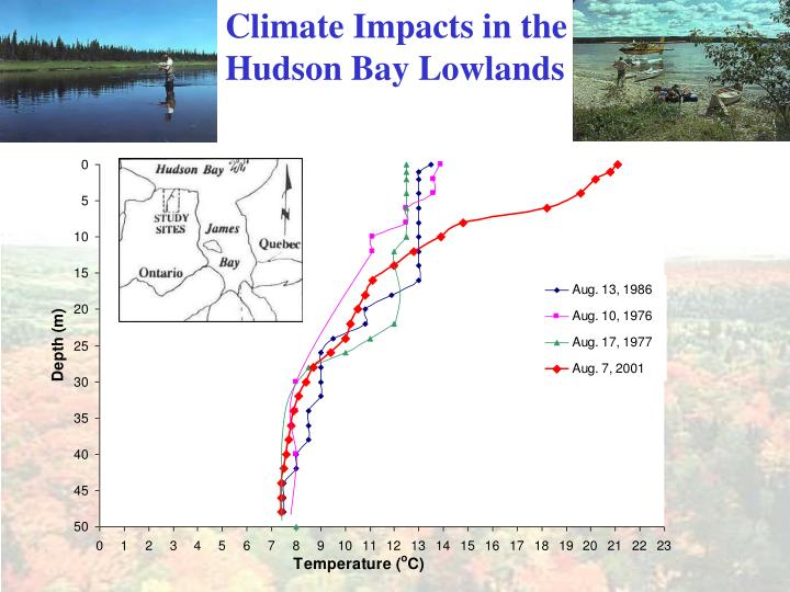 Climate Impacts in the Hudson Bay Lowlands