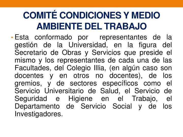 COMITÉ CONDICIONES Y MEDIO AMBIENTEDEL TRABAJO