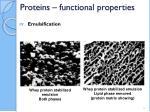 proteins functional properties25