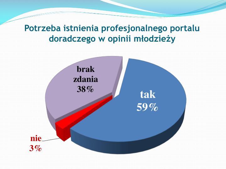 Potrzeba istnienia profesjonalnego portalu doradczego w opinii