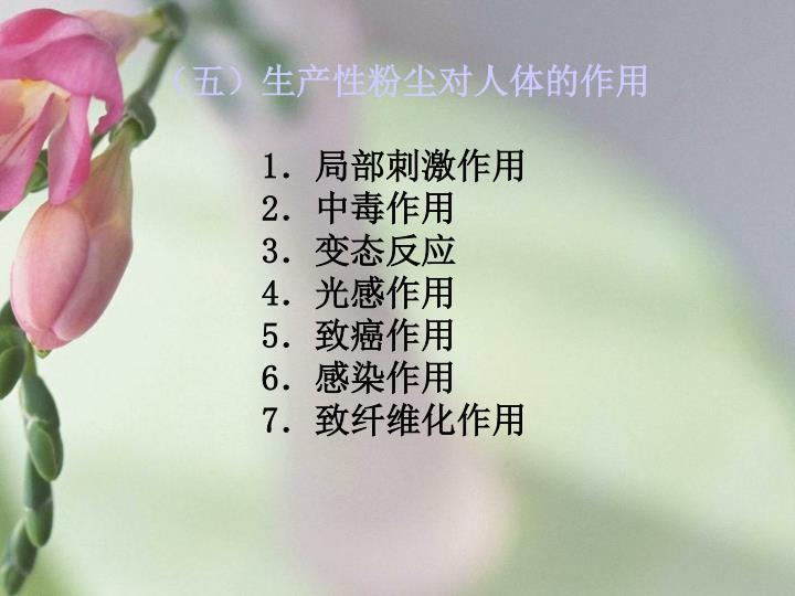 (五)生产性粉尘对人体的作用