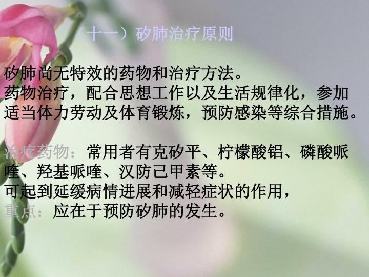 (十一)矽肺治疗原则