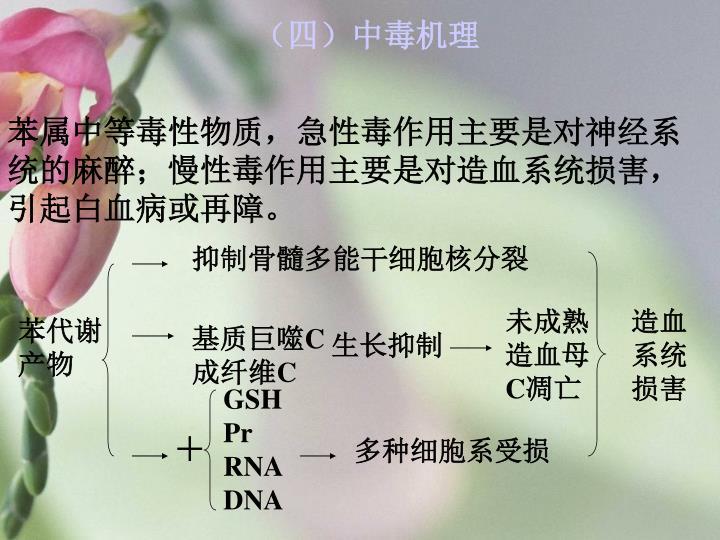 (四)中毒机理