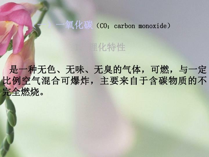 (一)一氧化碳