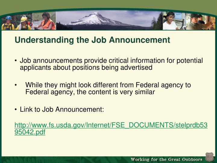 Understanding the job announcement