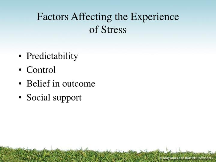 Factors Affecting the Experience