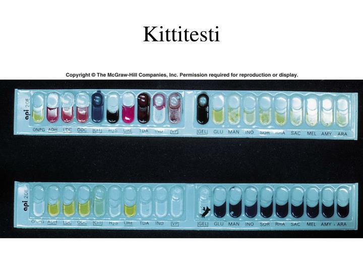 Kittitesti