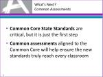 what s next common assessments