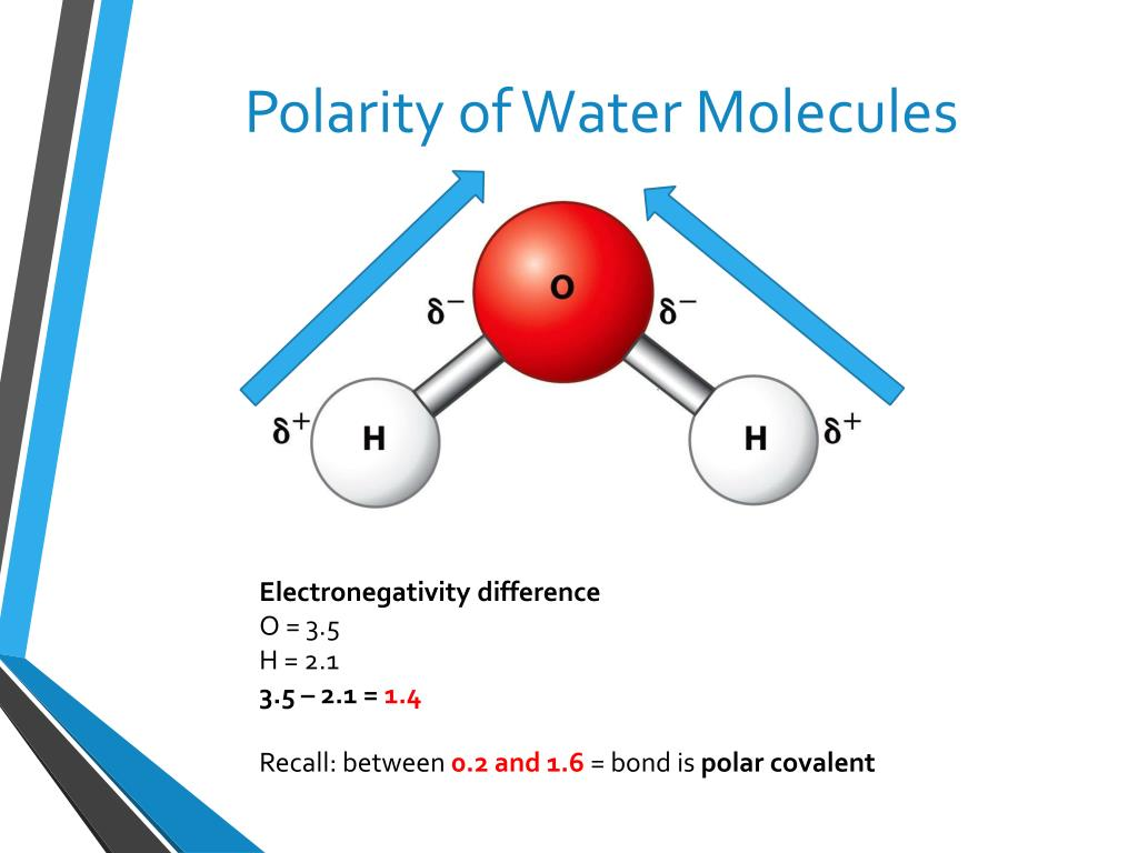 PPT - Solutions & Solubility PowerPoint Presentation - ID