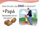 how do you say dad in spanish