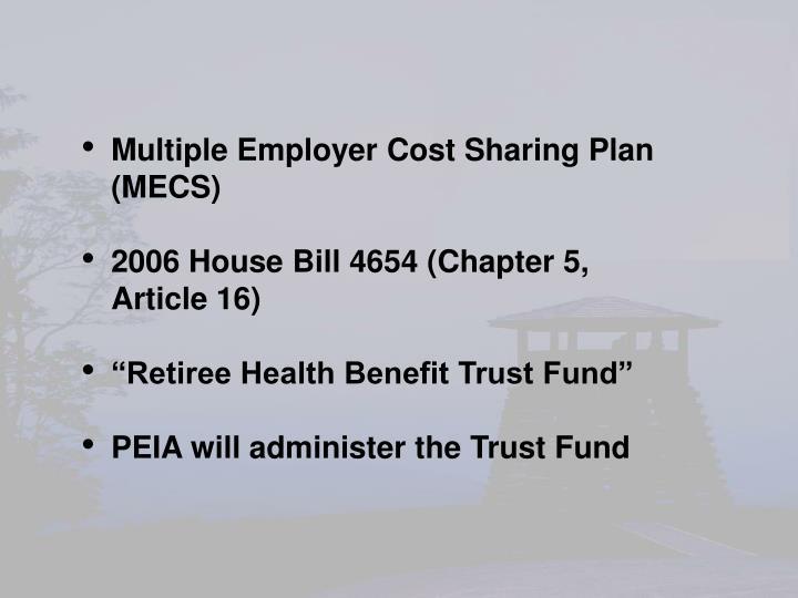 Multiple Employer Cost Sharing Plan  (MECS)