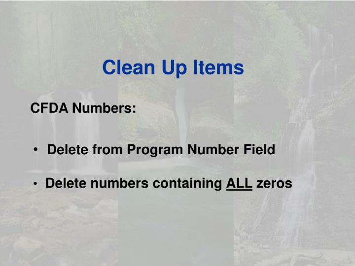 Clean Up Items