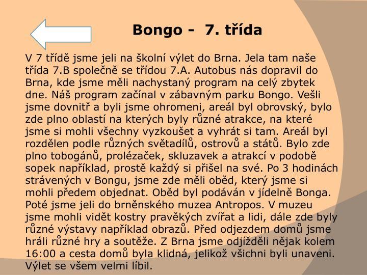 Bongo -  7. třída
