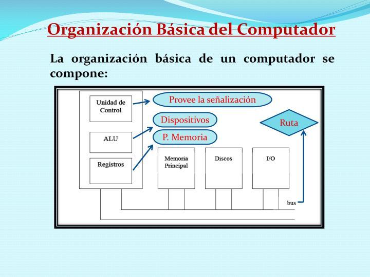 Organización Básica del Computador