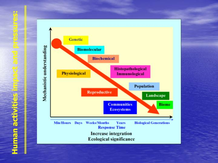 Human activities impact and pressures: