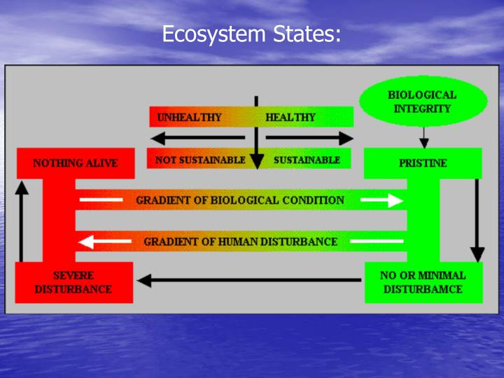 Ecosystem States: