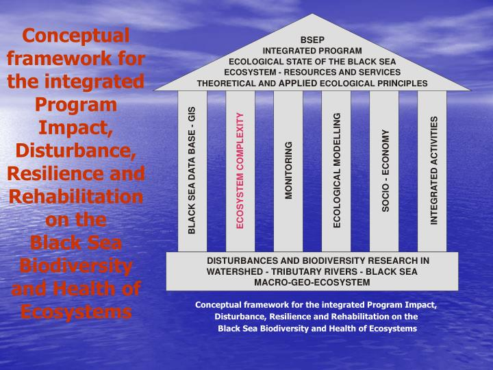 Conceptual framework for the integrated Program Impact, Disturbance, Resilience and Rehabilitation on the