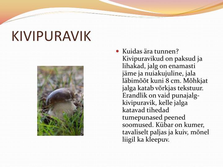 KIVIPURAVIK