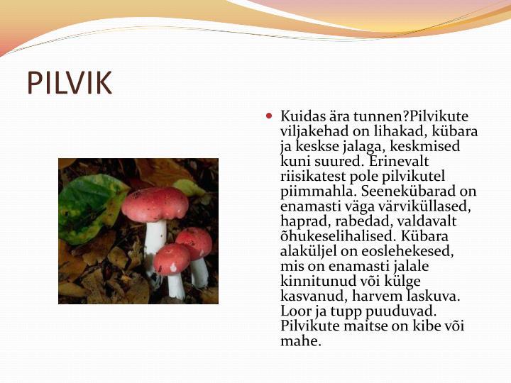 PILVIK