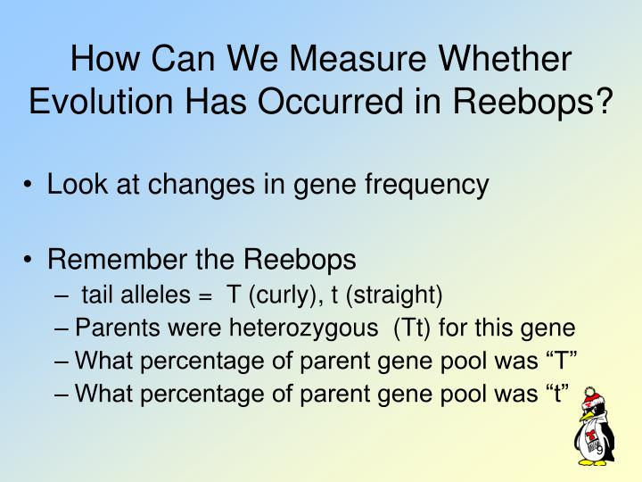 How Can We Measure Whether Evolution Has Occurred in Reebops?