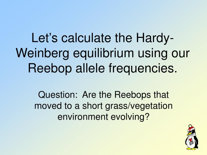 Let's calculate the Hardy-Weinberg equilibrium using our Reebop allele frequencies.