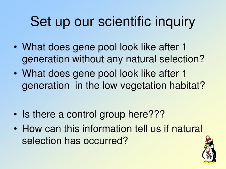 Set up our scientific inquiry