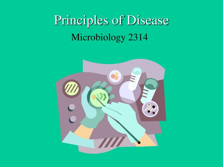 principles of disease n.