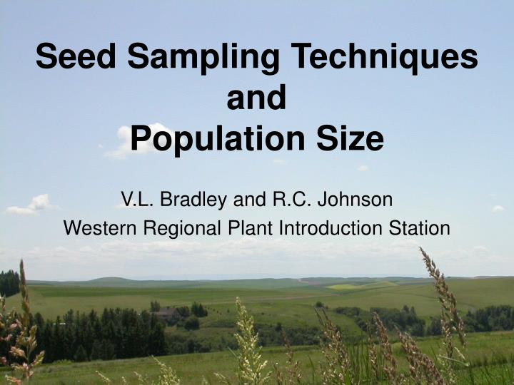 Seed sampling techniques and population size