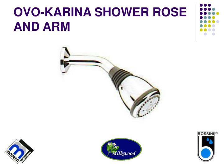 OVO-KARINA SHOWER ROSE AND ARM