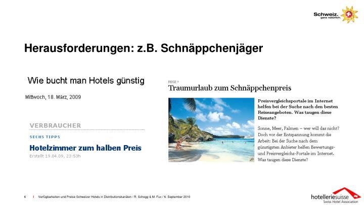 Herausforderungen: z.B. Schnäppchenjäger