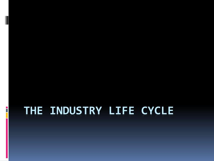 the industry life cycle n.