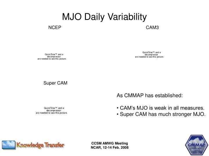 MJO Daily Variability