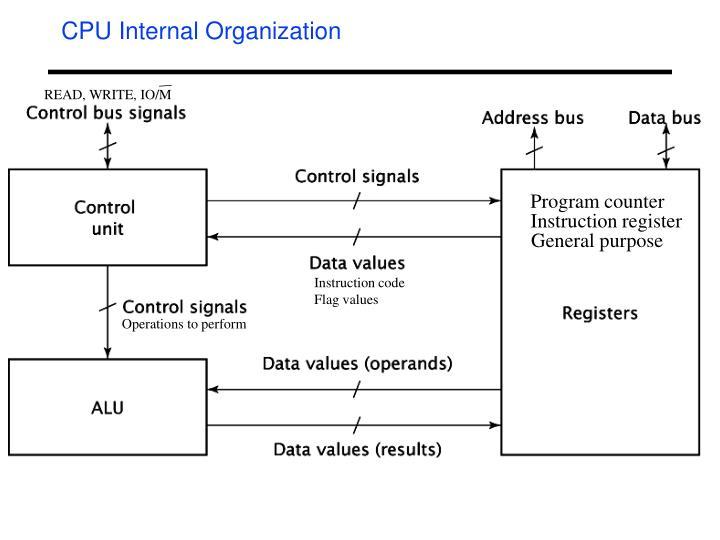 CPU Internal Organization