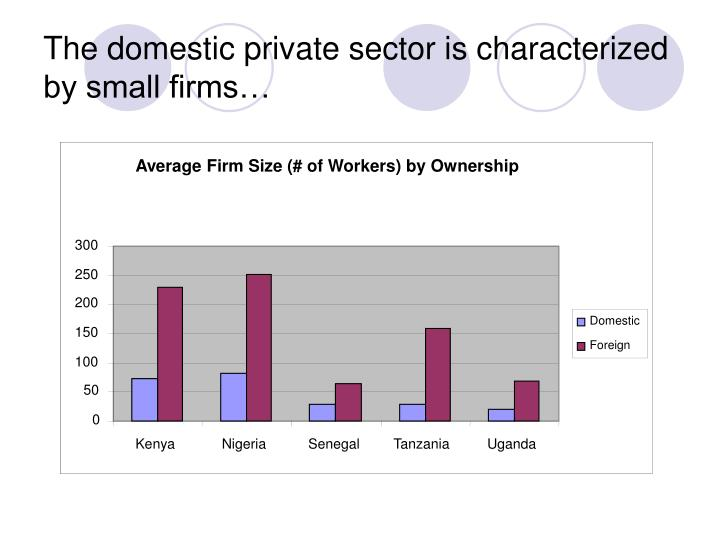 Average Firm Size (# of Workers) by Ownership