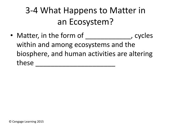 3 4 what happens to matter in an ecosystem