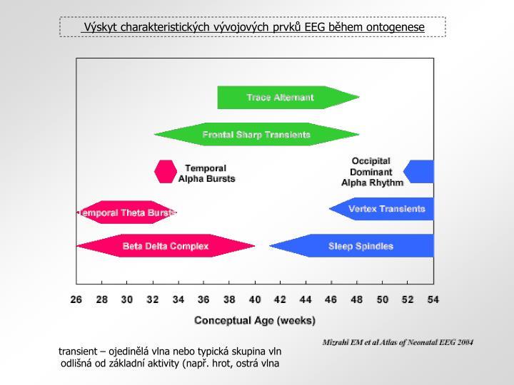 Výskyt charakteristických vývojových prvků EEG během ontogenese