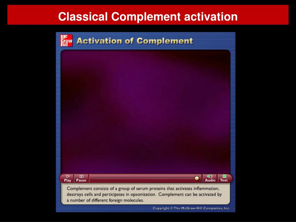 activation of complement mcgraw hill