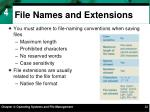 file names and extensions