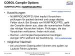 cobol compile options6
