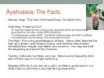 ayahuasca the facts