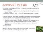 jurema dmt the facts