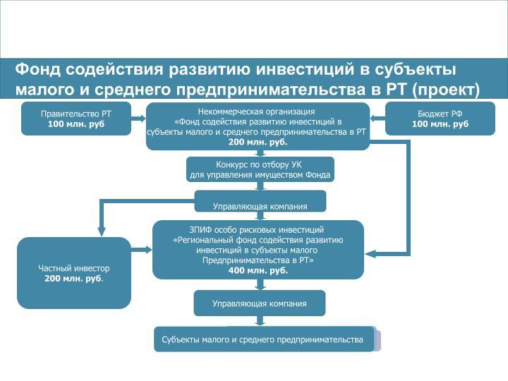 Фонд содействия развитию инвестиций в субъекты малого и среднего предпринимательства в РТ (проект)