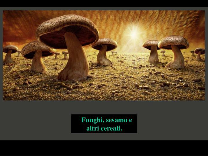 Funghi, sesamo