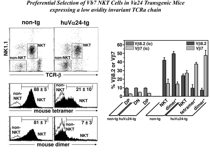Preferential Selection of Vb7 NKT Cells in Va24 Transgenic Mice expressing a low avidity invariant TCRa chain