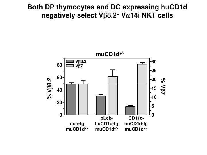 Both DP thymocytes and DC expressing huCD1d
