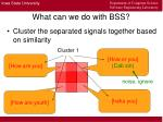 what can we do with bss9