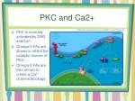 pkc and ca2