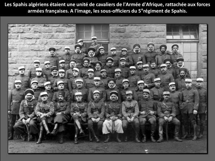 Les Spahis algériens étaient une unité de cavaliers de l'Armée d'Afrique, rattachée aux forces armées françaises. A l'image, les sous-officiers du 5°régiment de Spahis.