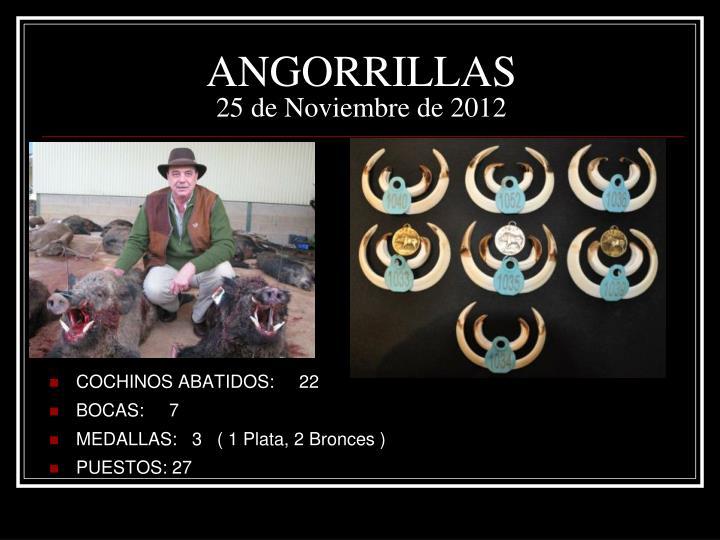 ANGORRILLAS
