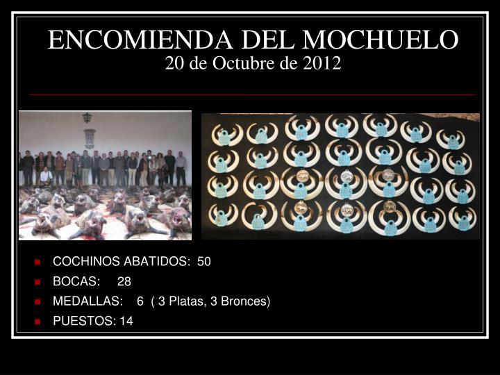 Encomienda del mochuelo 20 de octubre de 2012